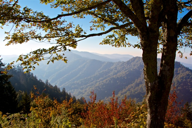 Morning-In-The-Great-Smokey-Mountains